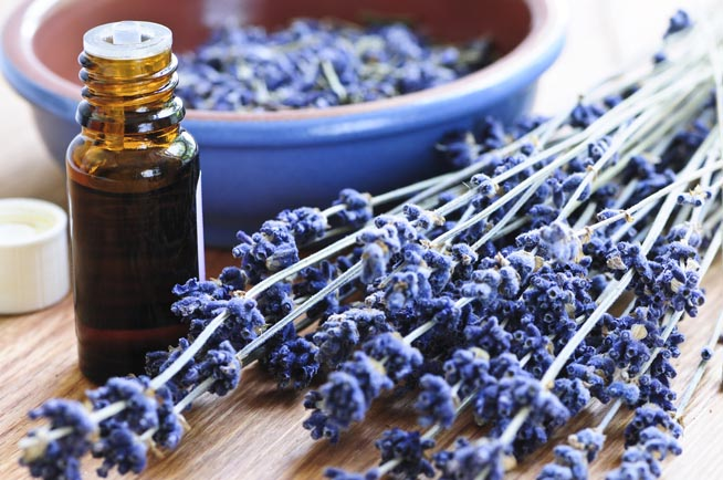 3 3 - Cách chọn tinh dầu cho spa của bạn